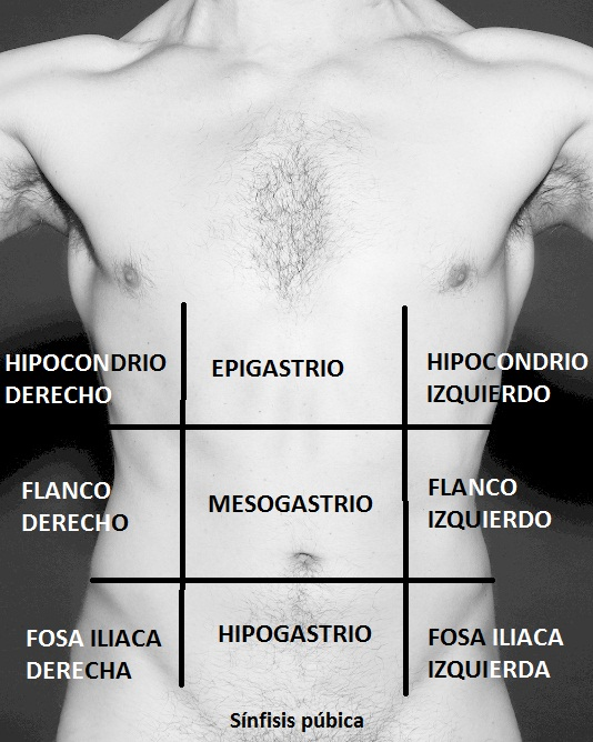 Osteopatía Visceral | Carlosteopata